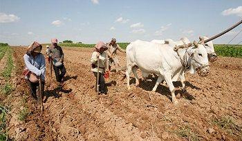 カンボジア、米国による支援のもと農業分野へ助成金を供与