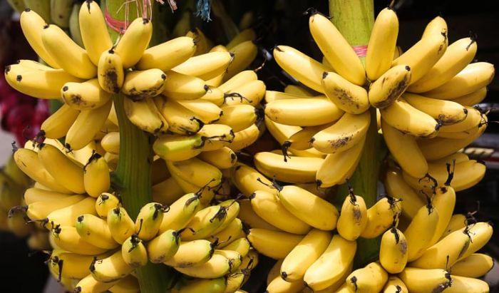 カンボジア、チキン・エッグ・バナナの海外輸出を計画